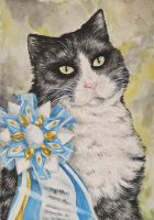 Watercolor work - Cat by mooni