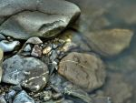 Rocks in the water by tzunoi