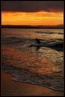 Surfing the sunset 1 by wildplaces