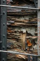 where wood and metal meet by jnicolini12