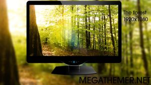 Nature Wallpaper The Forest V.3 by poweredbyostx
