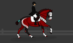 Moreno - SSHE Dressage by amour-interdit