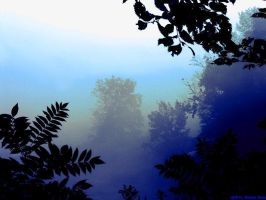 Blue Forest Mist by VisionsSeen