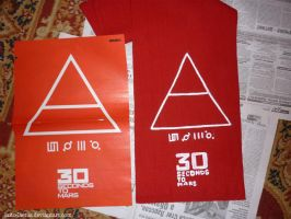 30 Seconds to Mars by laito-laetus
