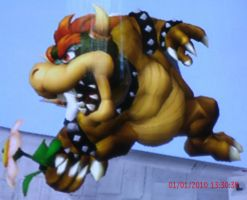 Bowser by Roy1313