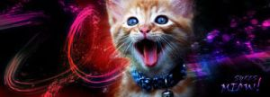 Meow Sig for Harry by Valmanther