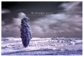 My Kingdom part 5 by werol