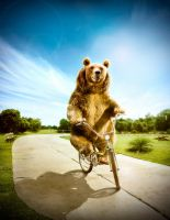 Cycling Happy Bear by NooA