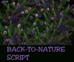 Back to Nature Script by allthenightlong