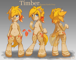 Timber - Pony Reference by Wild-Hound