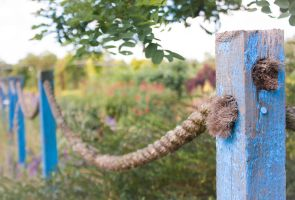 Blue Posts by ninaheather
