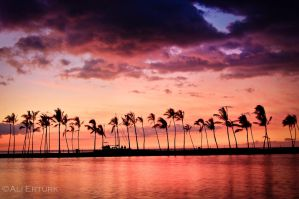 Hawaii by alierturk