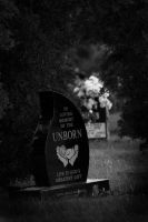 The Unborn by RadiancePhotography1