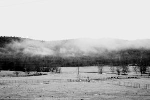 Fog in the Ozarks by Nat-photography