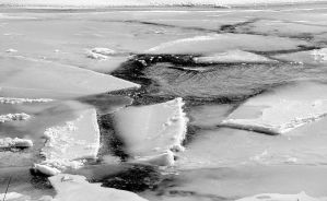 A Slice of Ice BW by moonlightrose44