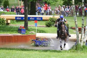 3DE Water Jump Series Bay Horse Pt 5 by LuDa-Stock