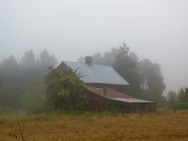 Barn in the Fog by boxcamera