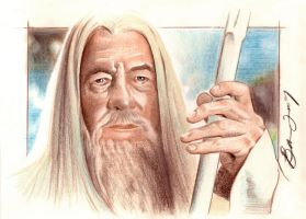 Gandalf the White by BenCurtis