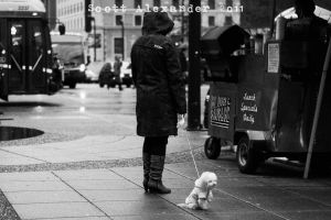 Hot dogs on the corner.. by straightfromcamera