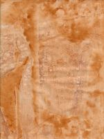 Weathered Paper 11 by DanteSangreal