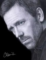 Hugh Laurie Drawing by Live4ArtInLA