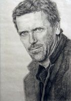 Hugh Laurie by emueller