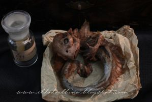 Mummified feejee mermaid by dodoalbino