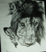 Lion WIP 2 by That-One-Midget