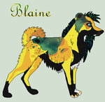 Blaine by J-Dove