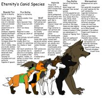 Eternity's Canid Species by jjferrit