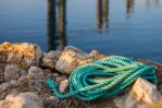 Coiled by MarkKenworthy