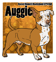 Auggie Reference by PittMixx
