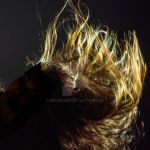 Hair by Perseus67