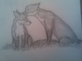 Grooming Foxes by Amykat12