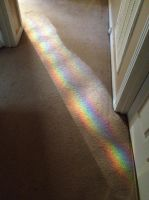There's a Rainbow in My Hallway by creecreehoneybees