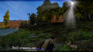 DayZ Standalone Wallpaper 2014 95 by PeriodsofLife
