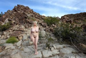 I Am A Rock by dwingephotography