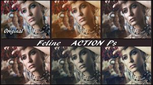 Feline   Actions Ps by Tetelle-passion
