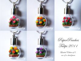 Tulips - Limited Edition by Paper-Peaches