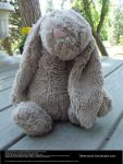 Bunny Toy Stock -1 by Tefee-Stock
