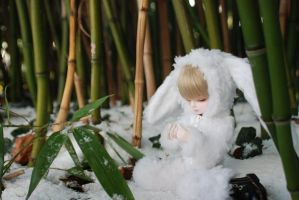 Snow-Bunny-4 by deVIOsART