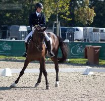 National Dressage and Jumping_42 by CalyHoney