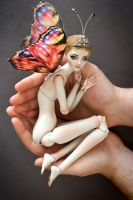 Holding a butterfly by Marina-B
