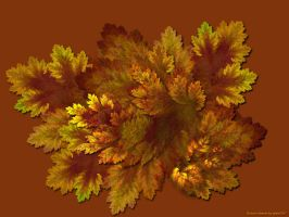 Autumn leaves by gitte