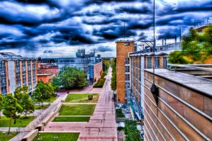 University of New South Wales by iSi1ent