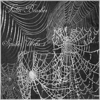 Spider Web Brushes Set 1 by Falln-Stock
