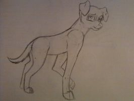 My fursona before i digitized it by Darkwolfhellhound