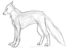something looks off with my wolf by AuroraPaws