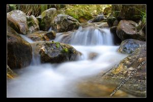 Streams May Flow by Meema