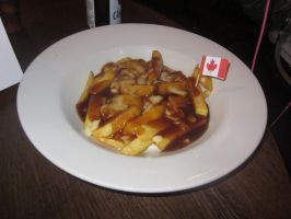 Canadian Poutine by TheRealCanadianBoys